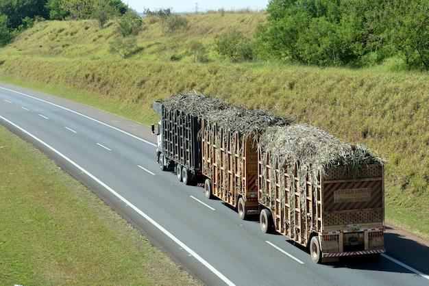 道路上のサトウキビを輸送するトラック Premium写真