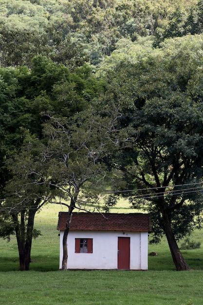 サンパウロ州の典型的な農場の施設 Premium写真