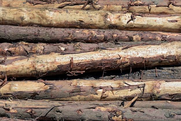 クローズアップバックグラウンドで木製のトランクの山で構成 Premium写真