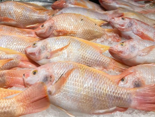 市場の氷棚の新鮮な魚 Premium写真