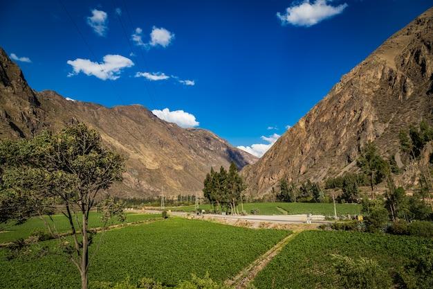 Горная долина священной долины с зеленой зоной, куско, перу Premium Фотографии