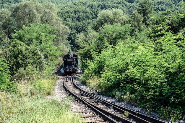 古い機関車の車輪。歴史的な蒸気機関車は落葉樹林を通過します。 Premium写真