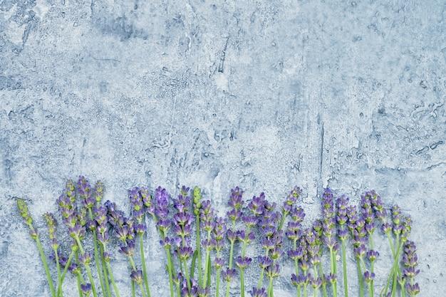 青色の背景にラベンダーの花。コピースペース、トップビュー。 Premium写真