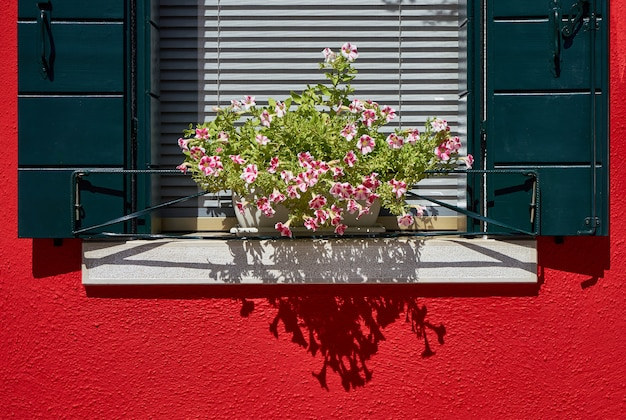 緑のシャッターとポットの花を持つウィンドウ。私 Premium写真