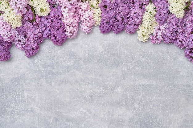 灰色の背景に春のライラック色の花 Premium写真