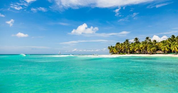 白い砂浜、ココナッツの木、ターコイズブルーの海の水と美しい熱帯のビーチ Premium写真