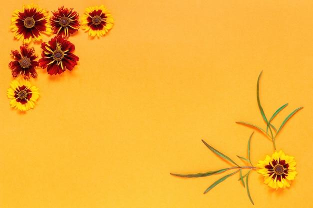 オレンジ色の背景に黄色の赤い花コーナーフレーム。 Premium写真