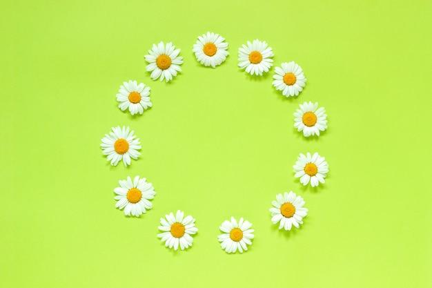 Рамка цветочная круглая венок из цветов ромашки. Premium Фотографии