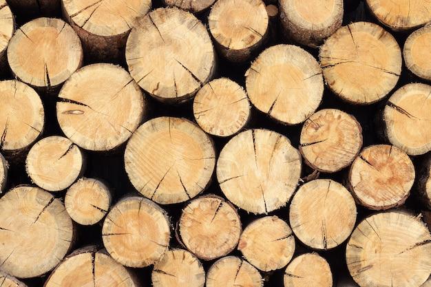 木の丸太のウッドパイルスタック、あなたのデザインのための抽象的な背景テクスチャ Premium写真