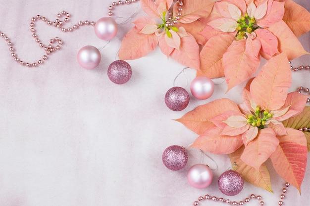 ピンクの背景にピンクのポインセチア、ボール、ビーズ Premium写真