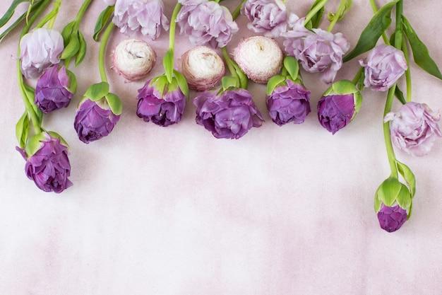 Подряд стоят фиолетовые тюльпаны и свободное место для текста Premium Фотографии