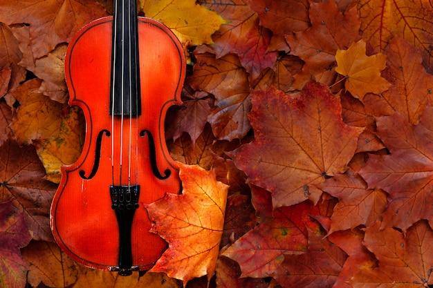 黄色の秋のカエデの古いバイオリンは背景を残します。トップビュー、クローズアップ。 Premium写真