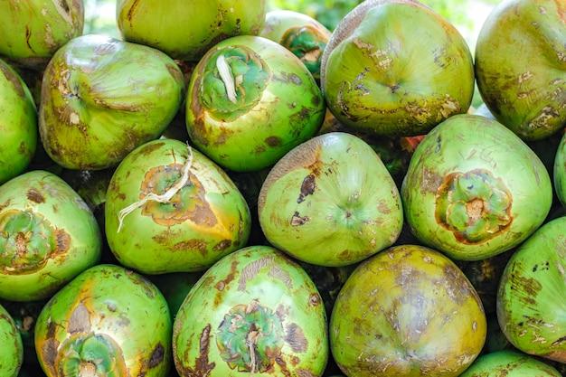 インドの緑のココナッツの束またはグループ Premium写真