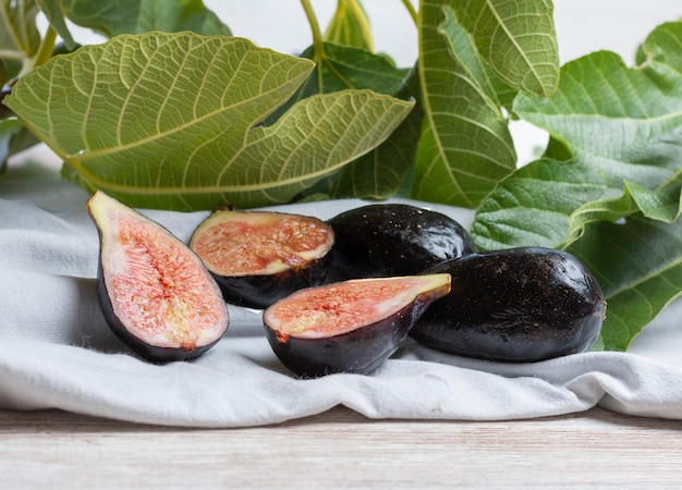 イチジクの木から摘みたての熟したイチジク Premium写真