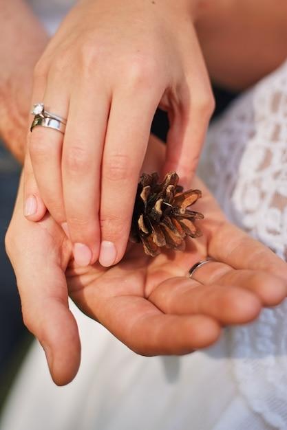 Женская рука держа шишка в природе зеленый форрест. Premium Фотографии