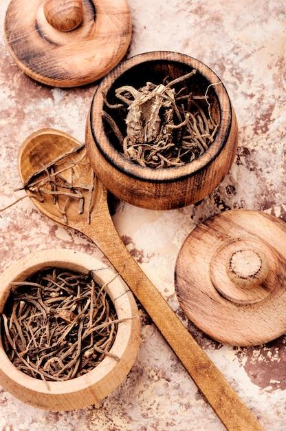 Сухой корень валерианы Premium Фотографии