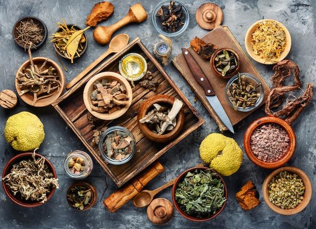 Натуральное растительное лекарственное средство Premium Фотографии