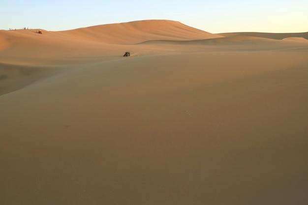 Люди наслаждаются багги в огромной пустыне уакачина, ика, перу, южная америка. Premium Фотографии