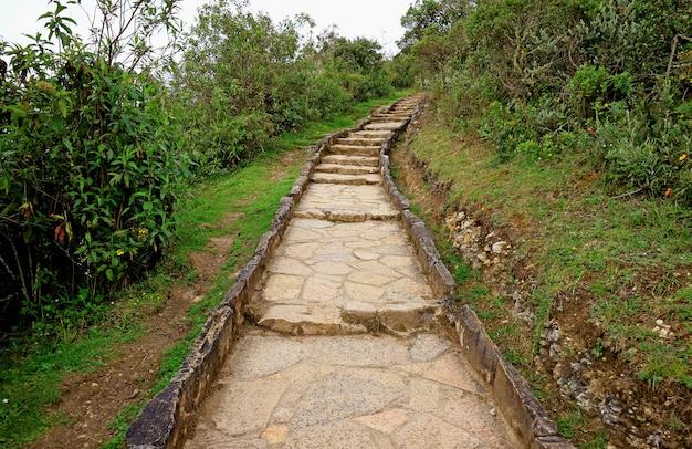 Каменная пешеходная дорожка под легким дождем к археологическим раскопкам в куэлапе Premium Фотографии