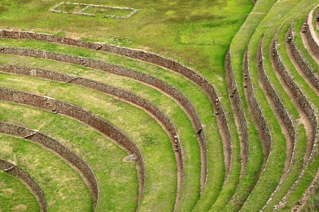 インカの農業テラス遺跡の美しい行 Premium写真