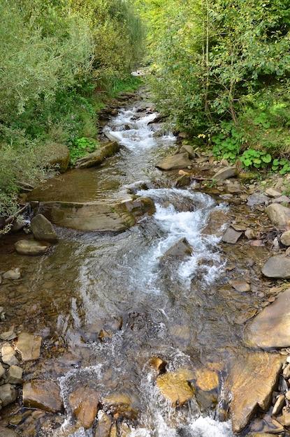 山の石の間の水の短い流れの形で小さな野生の滝のクローズアップ画像 Premium写真