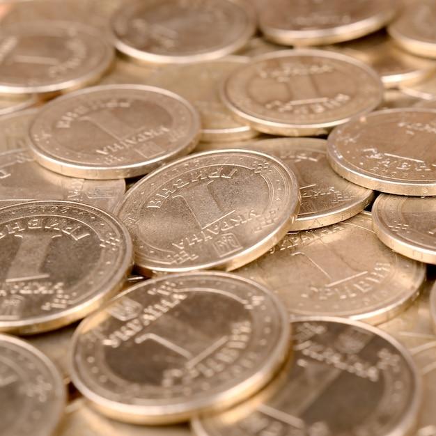 経済的な成功ウクライナのお金 Premium写真