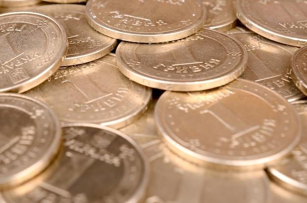 豊かな生活の概念のための経済的な成功ウクライナのお金 Premium写真
