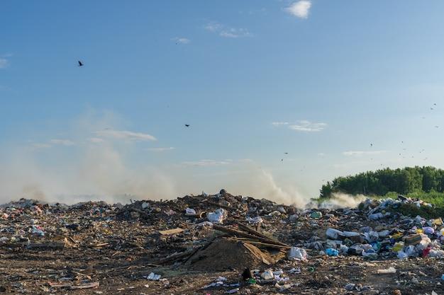 Городская свалка с разным мусором горит в солнечный летний день Premium Фотографии