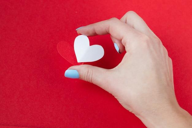赤の背景に赤と白の心を持っている手。バレンタインデーの背景 Premium写真