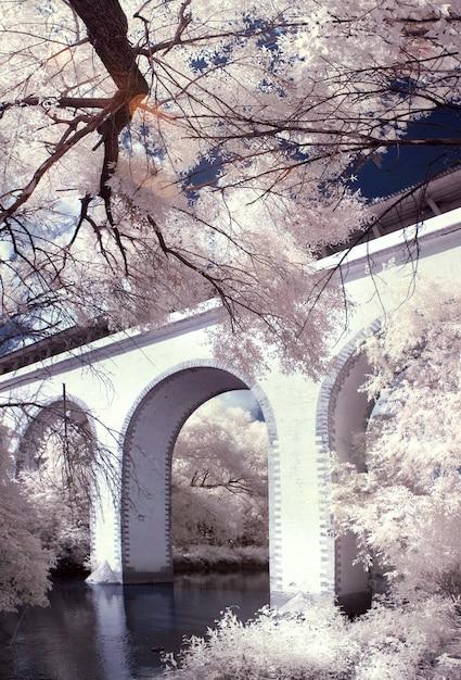 Белый мост через реку Premium Фотографии