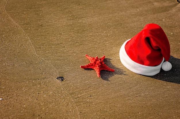 Шапка санта клауса, тропическое рождество Premium Фотографии