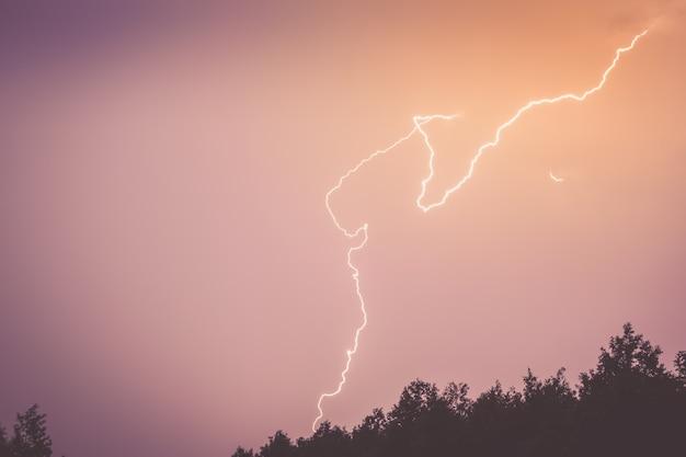 森のシルエットの上空にある稲妻。 Premium写真
