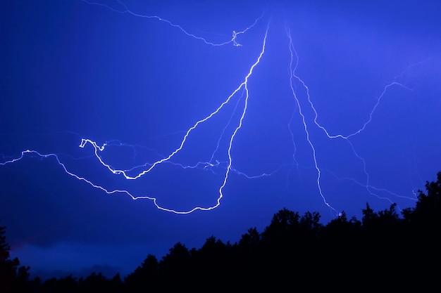 夜の森の上の蜘蛛の形をした雷 Premium写真