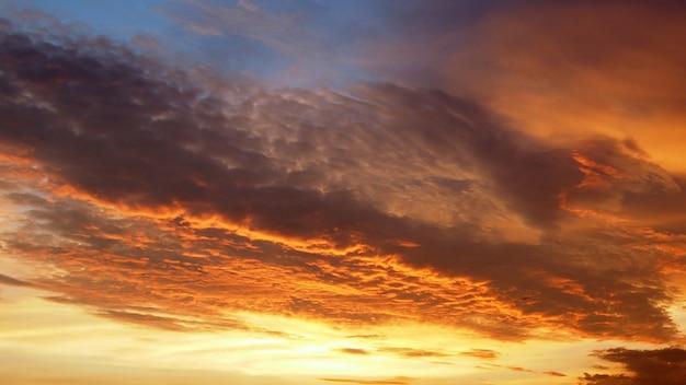 夕焼けの地平線 Premium写真