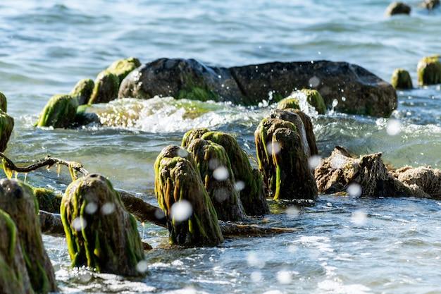 壊れた木製の桟橋は海に残っています。日光の下で美しい水の色。潮と海のスプレー。古い木のポストは生い茂った海藻。 Premium写真
