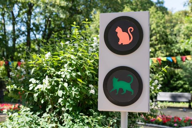 Светофор с кошками. смешная концепция светофора для детей и родителей в городском саду Premium Фотографии