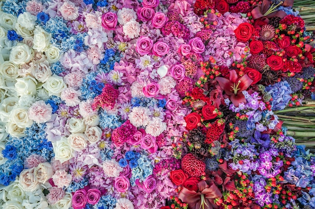 花の背景。バラ、ヤグルマギク、カーネーション、アジサイのフラワーアレンジメント。花壇、平面図、コピースペース。グレッティングカード、はがき。 Premium写真
