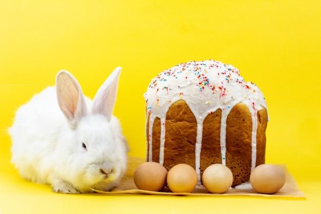パステルイエローの壁にイースターエッグのカップケーキが付いたイースターホワイトのふわふわライブウサギ。イースター休暇のコンセプト Premium写真