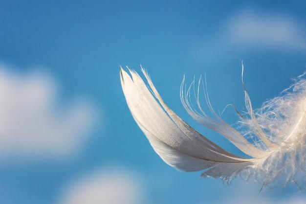 青い空を背景に白雪姫の羽 Premium写真