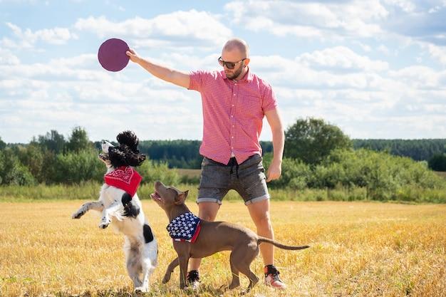 サイト上の犬の訓練 Premium写真