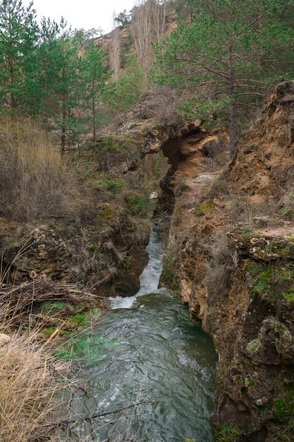 スペインの州の川の風光明媚なイメージ。 Premium写真