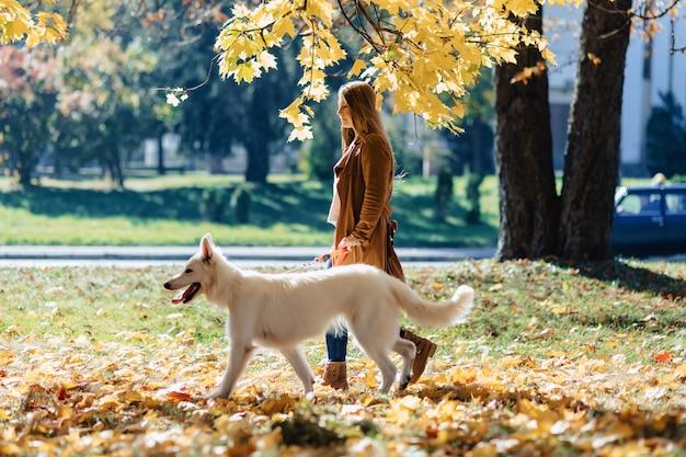 女の子は若い白いスイス・シェパード・ドッグと秋の公園で散歩します。 Premium写真