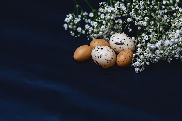 ジプソフィラとシンプルな灰色の背景に小さな卵 Premium写真
