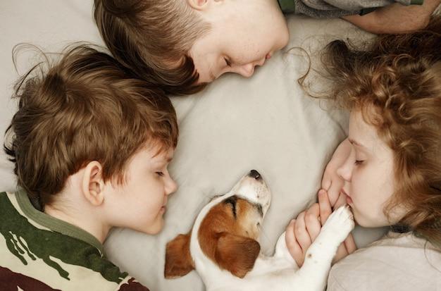 かわいい男の子と女の子が子犬を抱き締めます。 Premium写真