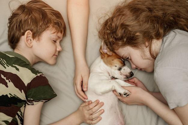子供の子犬ジャックラッセルテリアを敷設して抱き締めます。 Premium写真