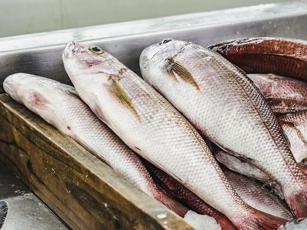 魚市場で新鮮な魚。閉じる Premium写真