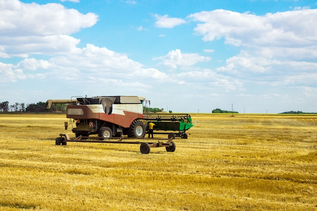コンベインは小麦を収穫します。フィールドの農業機械。穀物の収穫。 Premium写真