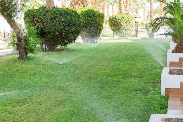 芝生に水をまく庭のスプリンクラー。自動散水芝生のコンセプト Premium写真