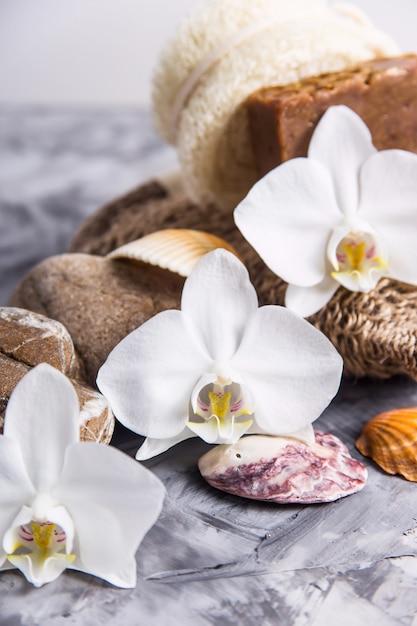Белые цветки орхидеи рядом с морскими камнями и ракушками на сером фоне Premium Фотографии