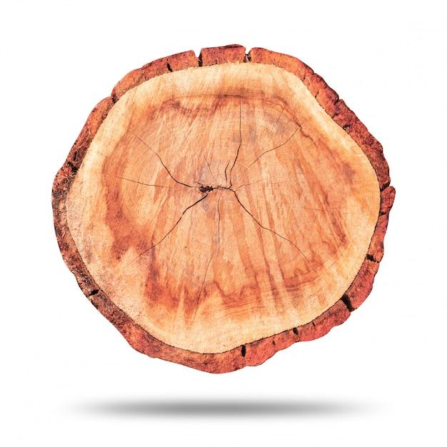 木の切り株または純粋な白で隔離される木製のログ Premium写真